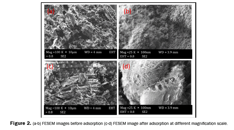 pure-and-applied-physics-FESEM-images-different-magnification