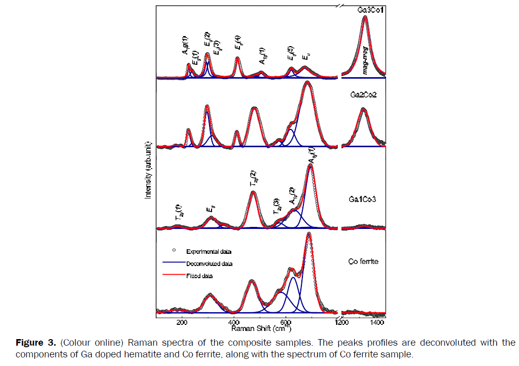 pure-applied-physics-Raman-spectra-composite-samples