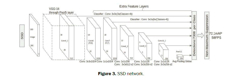 statistics-and-mathematical-sciences-SSD-network
