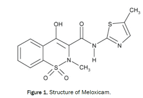 veterinary-sciences-Structure-Meloxicam
