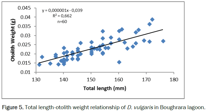 zoological-sciences-otolith-weight